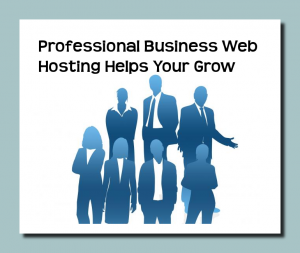 Professional Business Web Hosting Helps You Grow