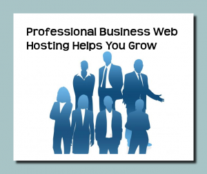 Professional Business Web Hosting Helps You Grow Online